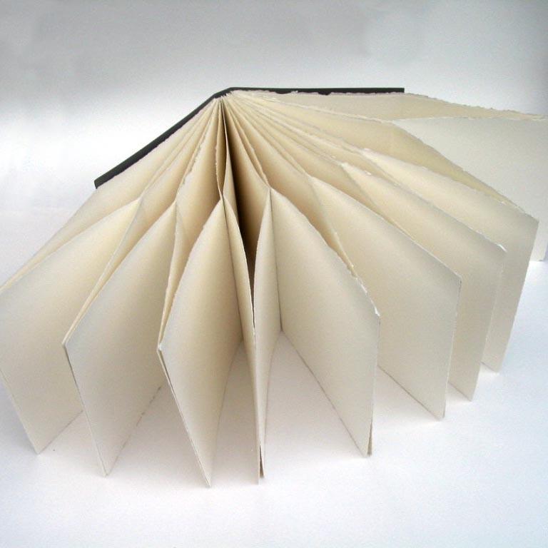littlepaperbird_foldoutbook.jpg