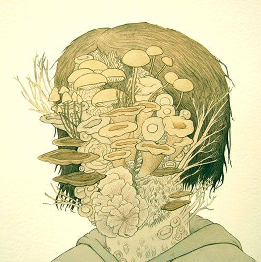 zachary rossman, decomposer, mushrooms, art, sculpture, print, thelooksee