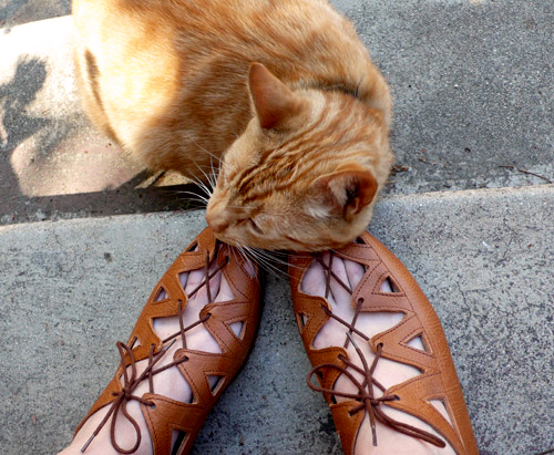 Calzolaio del Borro Palaia, shoes, sandals, italian, vintage, cat, ®thelooksee