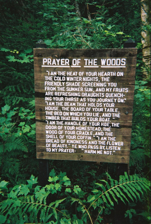 prayerofthewoods_copy.jpg
