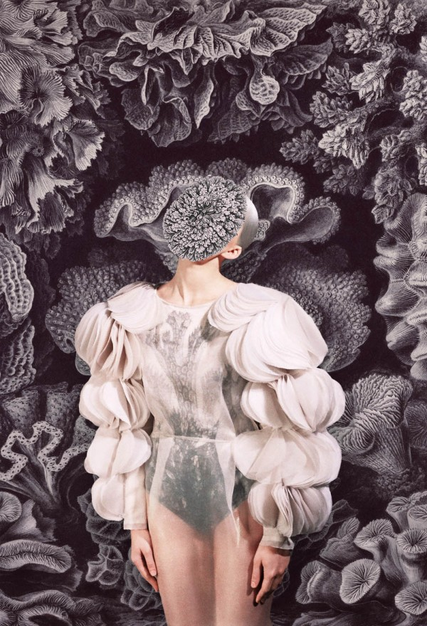 masha reva, merging, print, artist, fashion, design, photo